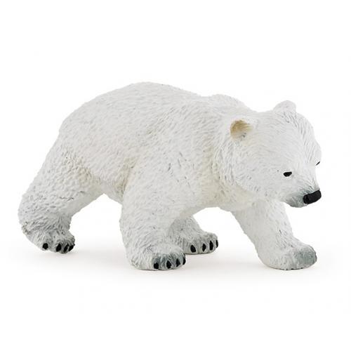 Urso Polar Bebé