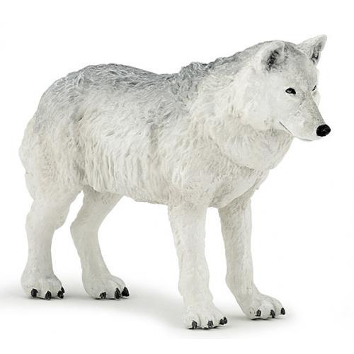 Lobo Polar