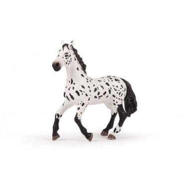 Cavalo Appaloosa Grande