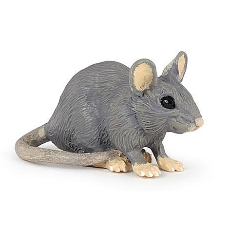 Rato Doméstico