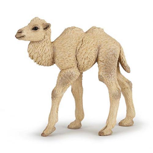 Camelo Bebé