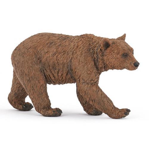 Urso Castanho