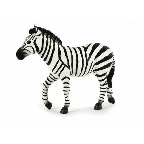 Zebra Macho