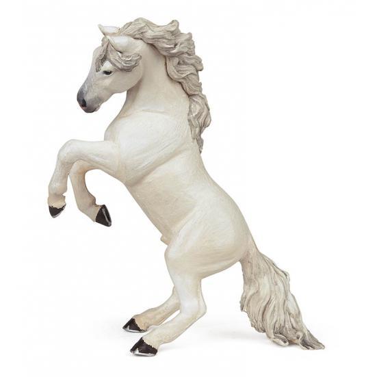 Cavalo Branco em Pé
