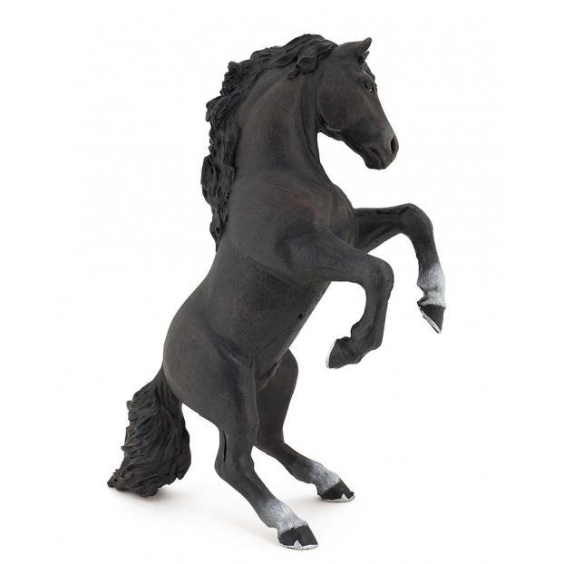 Cavalo Preto em Pé