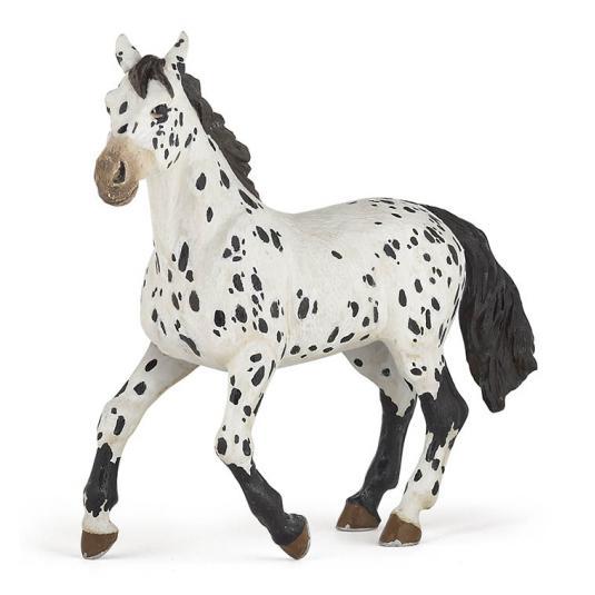 Cavalo Appaloosa Negro