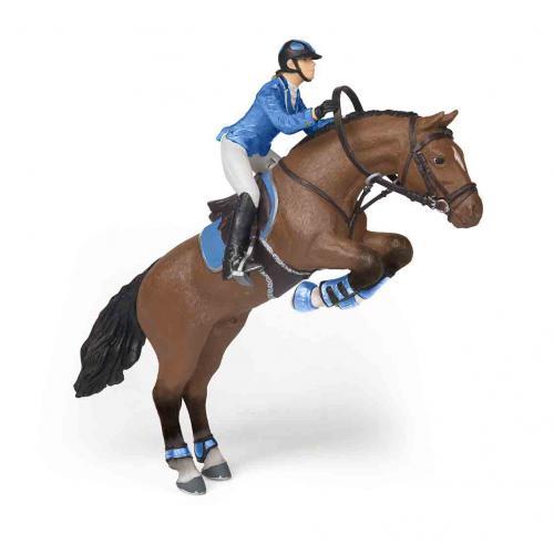 Cavalo de Salto de Obstáculos + Cavaleira