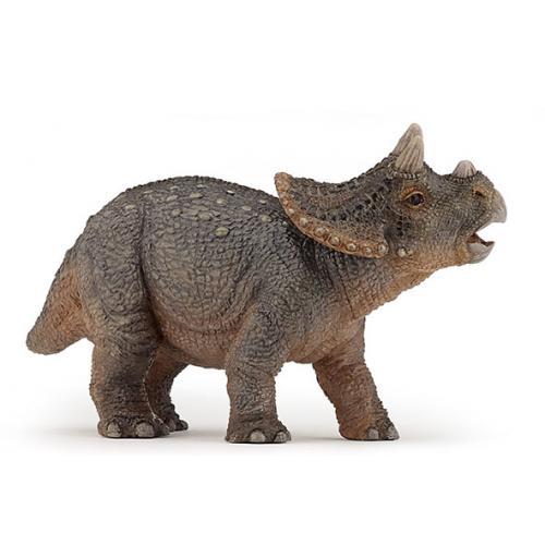 Triceratops Jovem