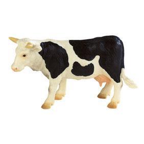 Vaca Fanny